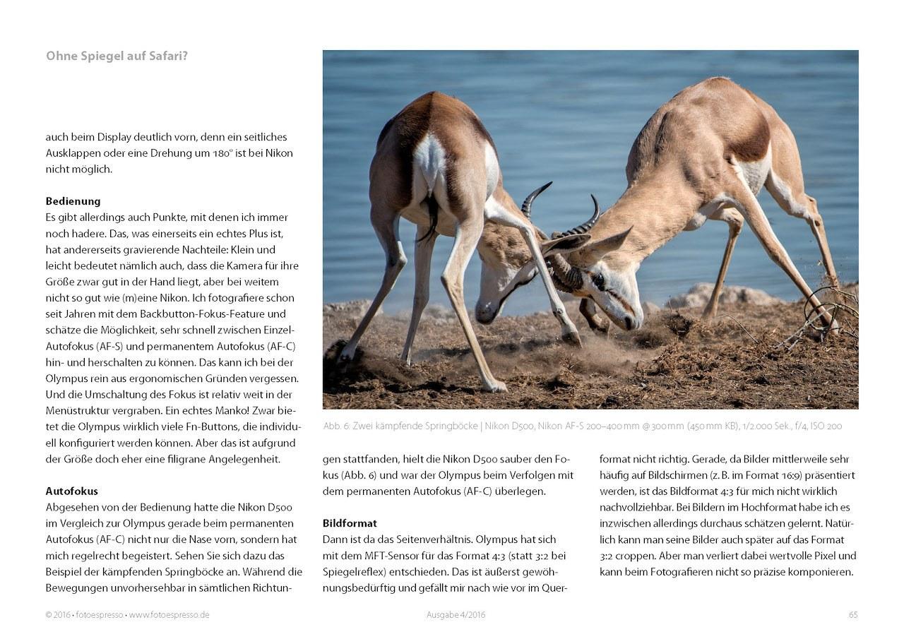 Tierfotografie mit Olympus - eine Erfahrungsbericht von Thorge Berger im Fotoespresso 2016-04