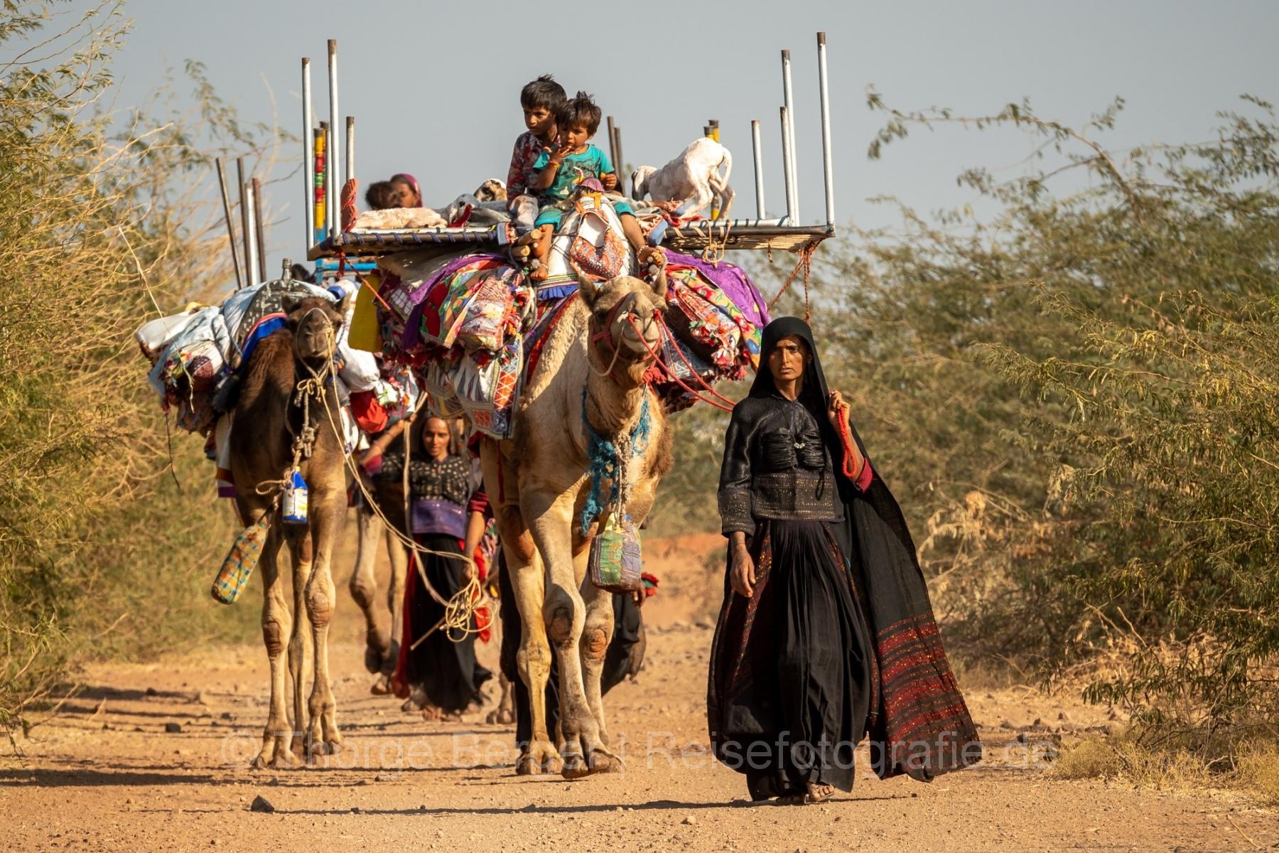Caravan of Rabari women