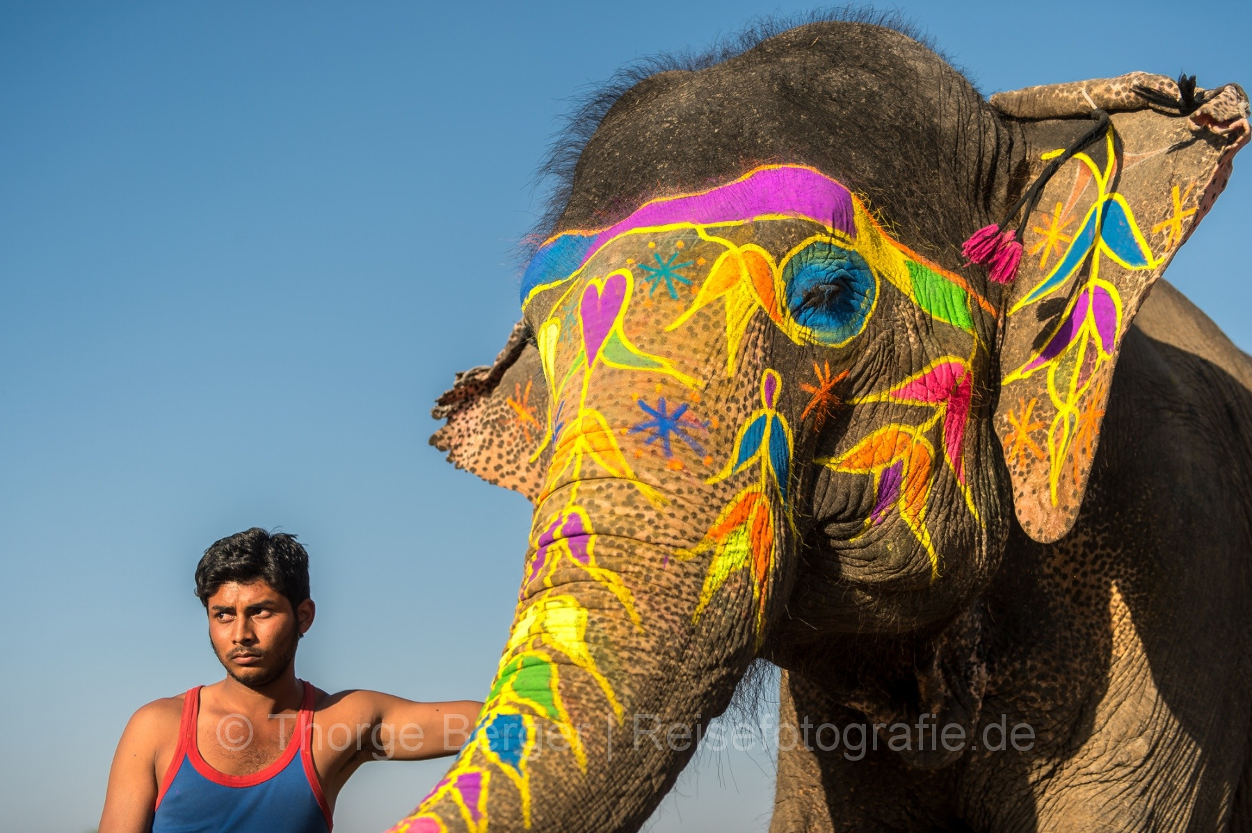 Mahout with his painted elephant