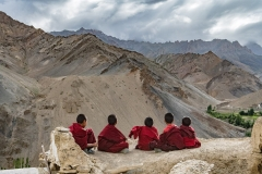Monks-in-Lamayuru-Monastery