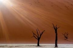 Sonnenaufgang im Dead Vlei, Namibia