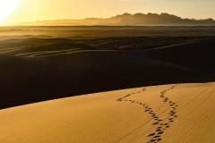 Spuren im Sand der Wüste Mesr, Iran