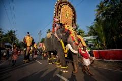 Elefanten-Parade in Kerala, Indien